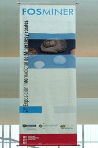 Fosminer 2004