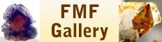 FMF Gallery