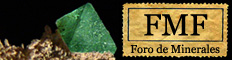 FMF Foro Minerales