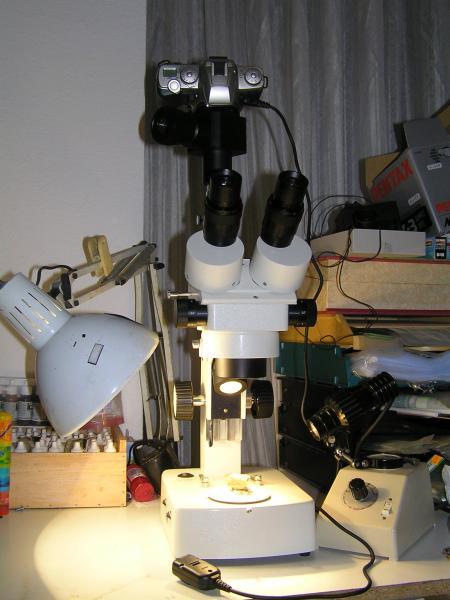 Micromounts y estereomicroscopios binoculares o trinoculares