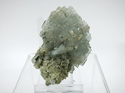 Baryte with Siderite and Pyrite.