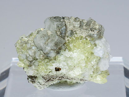 Harmotome with Pyrite and Fluorapophyllite-(K).