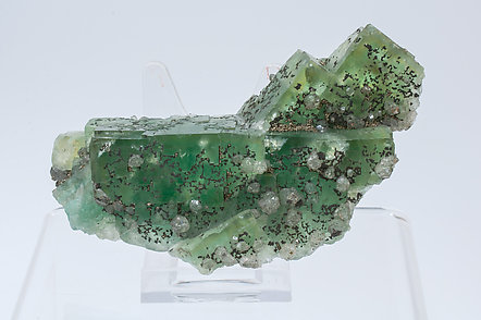 Fluorite with Quartz and Pyrite.