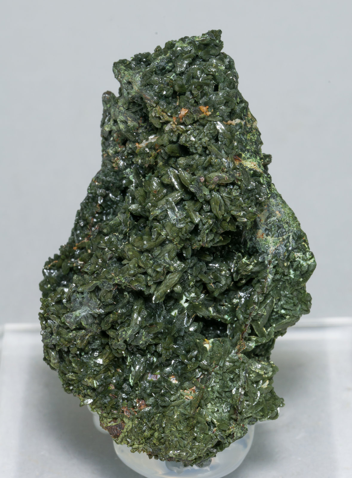 specimens/s_imagesAA1/Olivenite-EP99AA1f.jpg