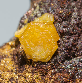 Mimetite with Beudantite.