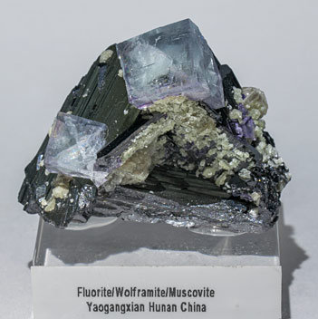 Fluorite with Ferberite and Muscovite.
