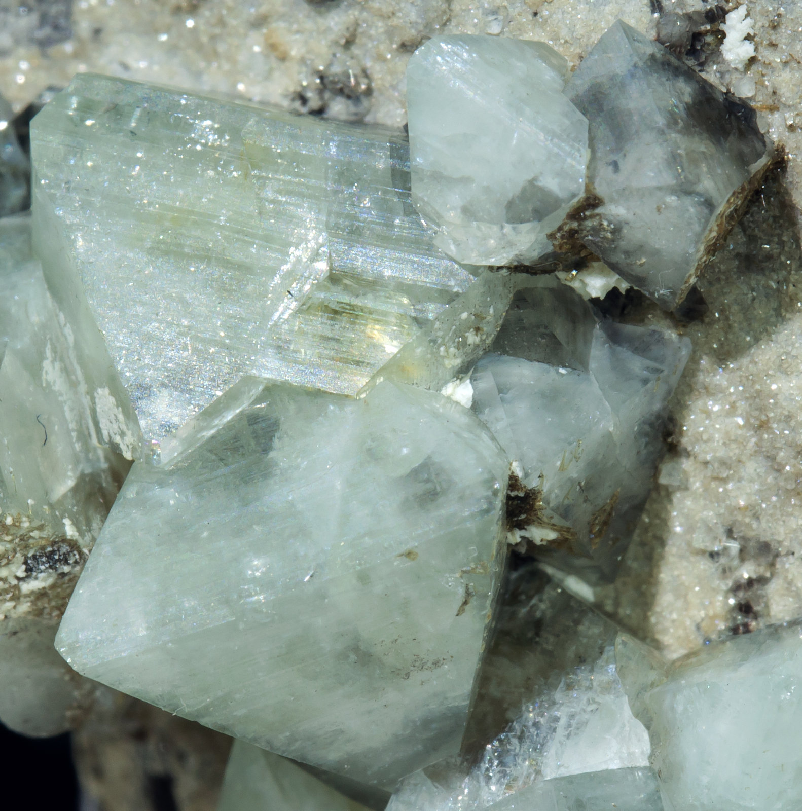 specimens/s_imagesAB1/Wardite-MF86AB1d.jpg