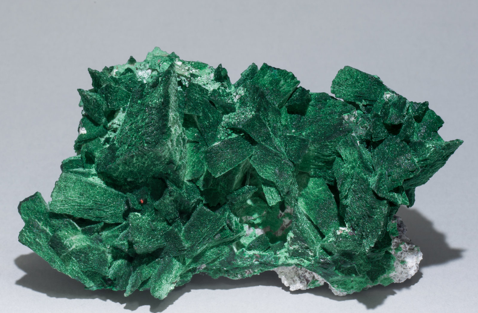 specimens/s_imagesAB3/Malachite-TN78AB3f.jpg