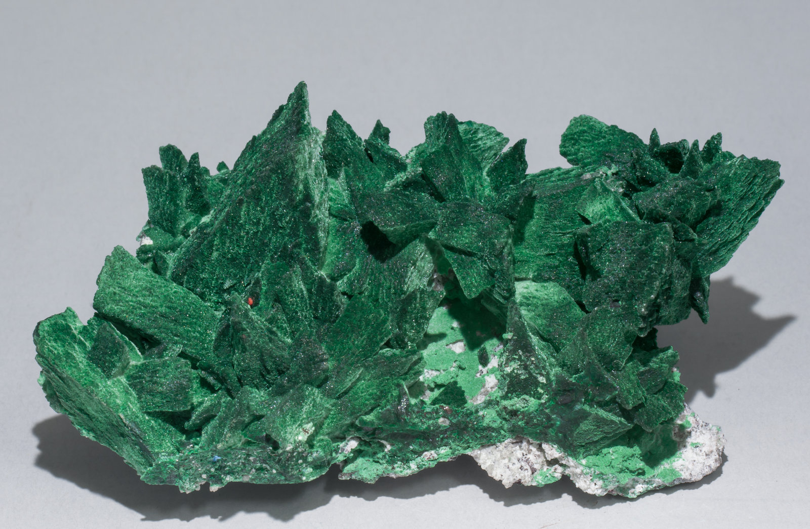 specimens/s_imagesAB3/Malachite-TN78AB3s.jpg