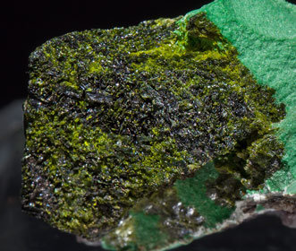 Volborthite with Malachite. Rear