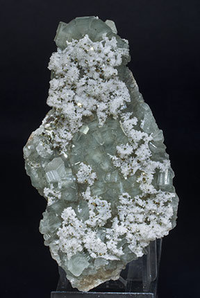 Fluorapatite with Quartz and Pyrite.