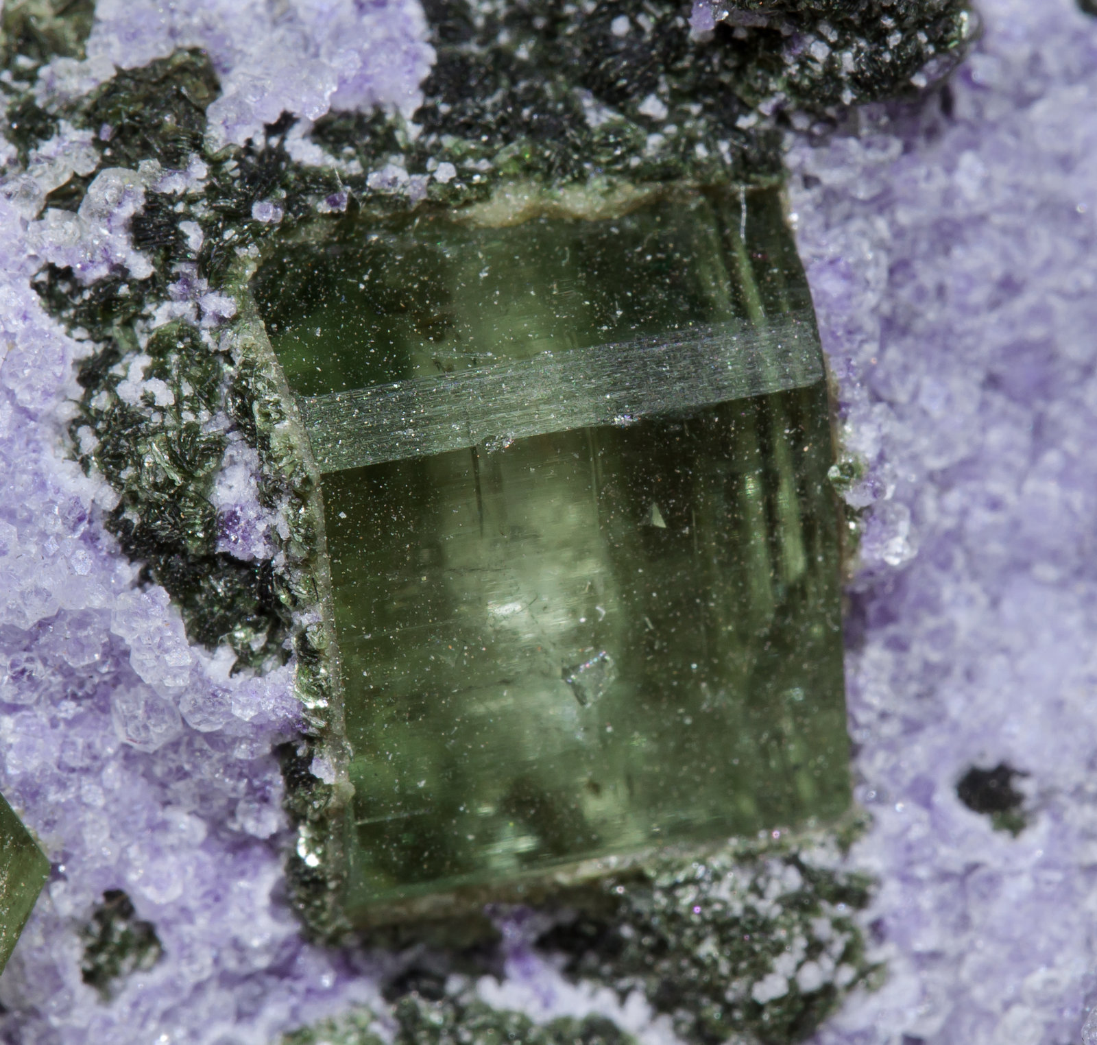 specimens/s_imagesAB5/Fluorite-NG98AB5d.jpg