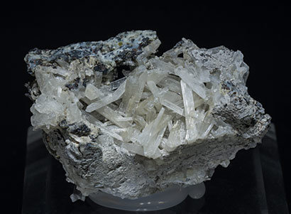 Olshanskyite with Andradite, Wurtzite and Galena.