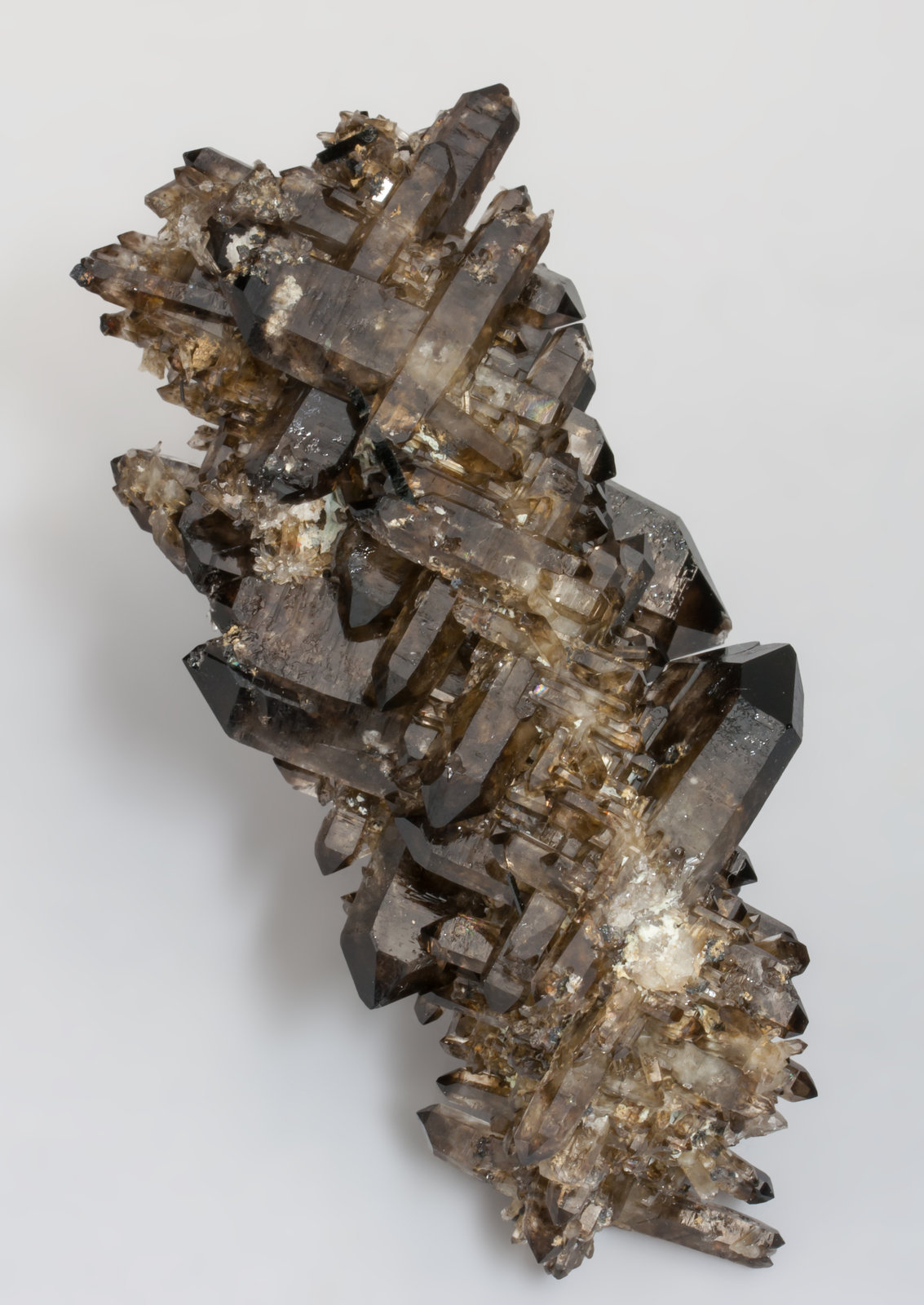 specimens/s_imagesAC0/Quartz-EQ37AC0f.jpg