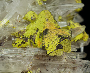 Stolzite on Scheelite and Quartz.