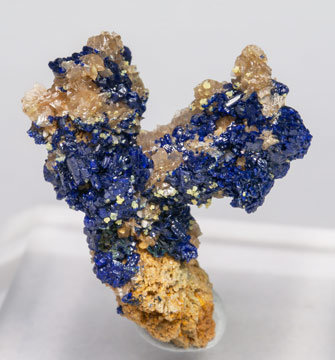 Miersite on Azurite and Cerussite.