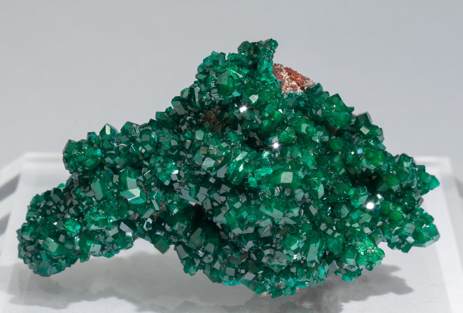 specimens/s_imagesAC2/Dioptase-TH68AC2f.jpg