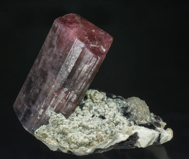 Tourmaline with Quartz (variety smoky), Mica and Feldspar. Rear