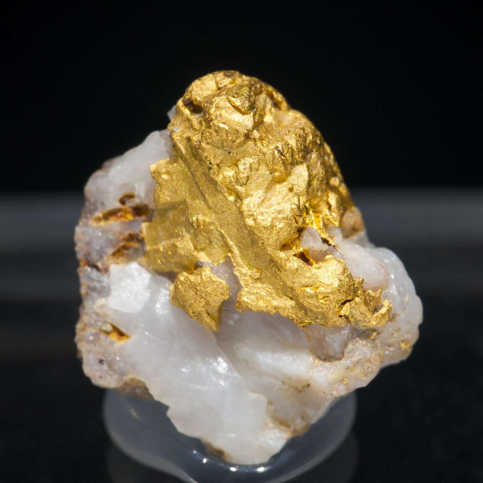 specimens/s_imagesAC4/Gold-ND67AC4f.jpg