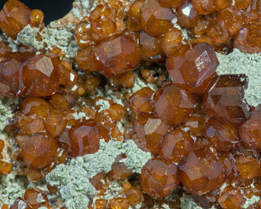 Grossular (variety hessonite) with Chlorite.