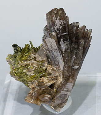 Axinite-(Mn) with Epidote. Front
