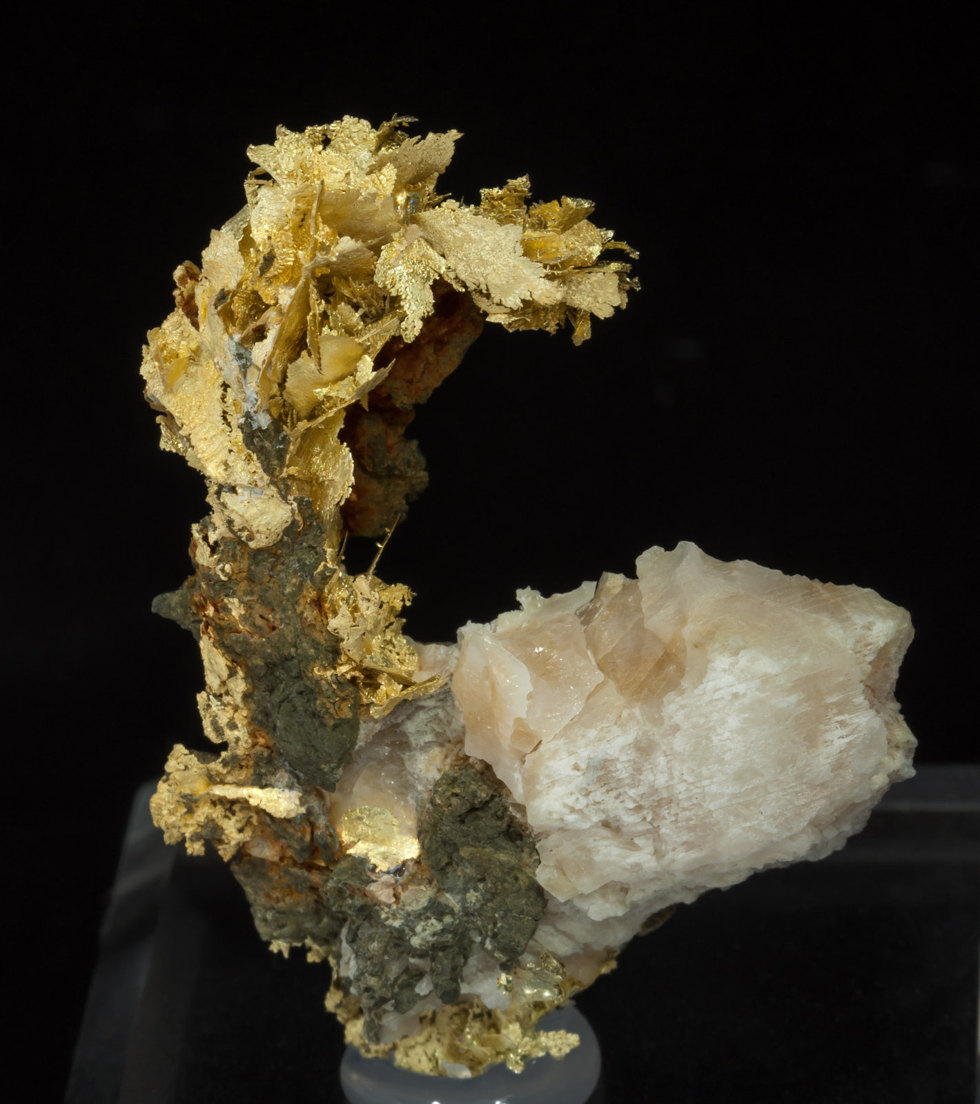 specimens/s_imagesAD5/Gold_electrum-TF67AD5f.jpg