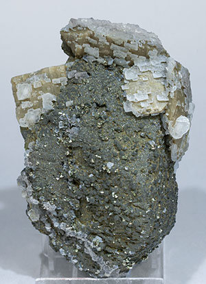 Stannite with Chalcopyrite, Pyrite, Marcasite, Siderite and Calcite.
