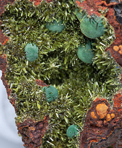 Olivenite and Azurite.