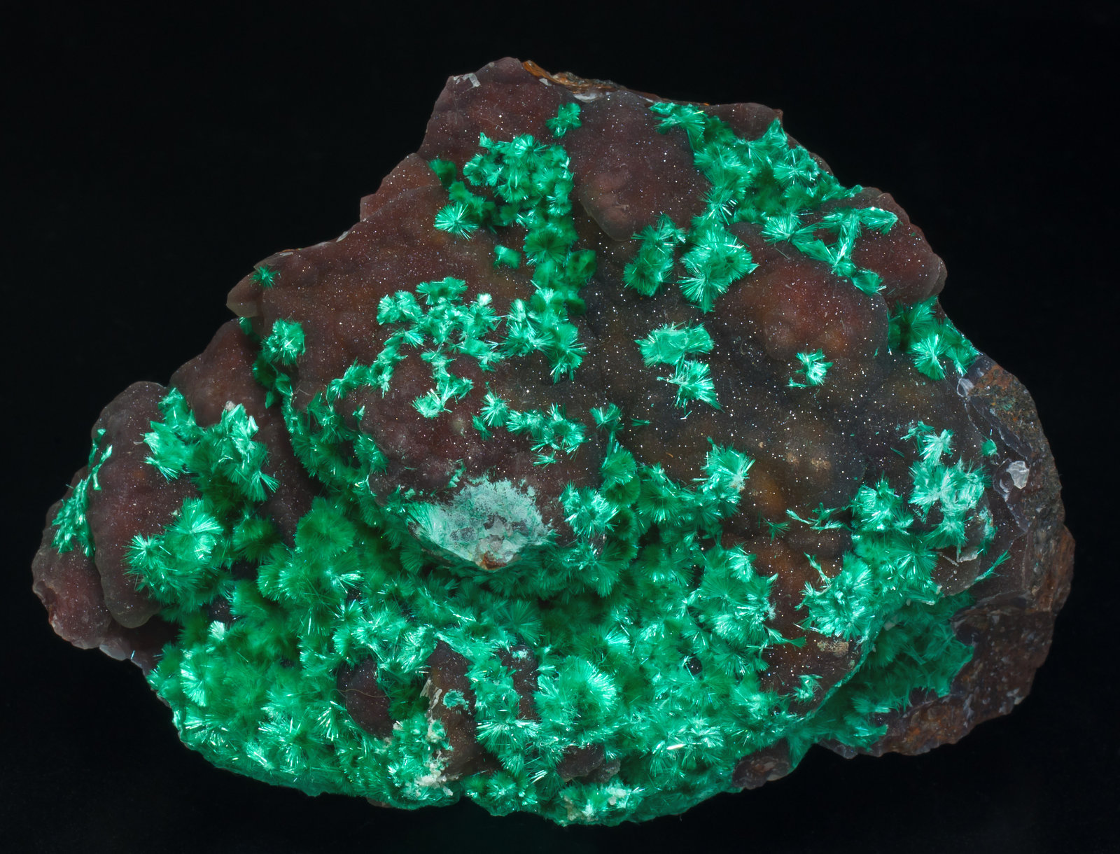 specimens/s_imagesAE3/Brochantite-EB48AE3f.jpg