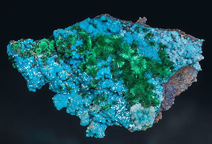 Brochantite with Chrysocolla and Atacamite.