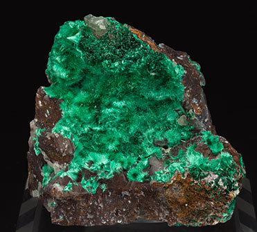 Brochantite with Atacamite and Quartz (variety chalcedony).