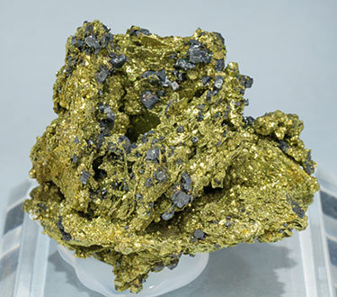 Chalcopyrite after Polybasite with Acanthite. Front