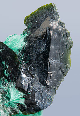 Volborthite with Brochantite.
