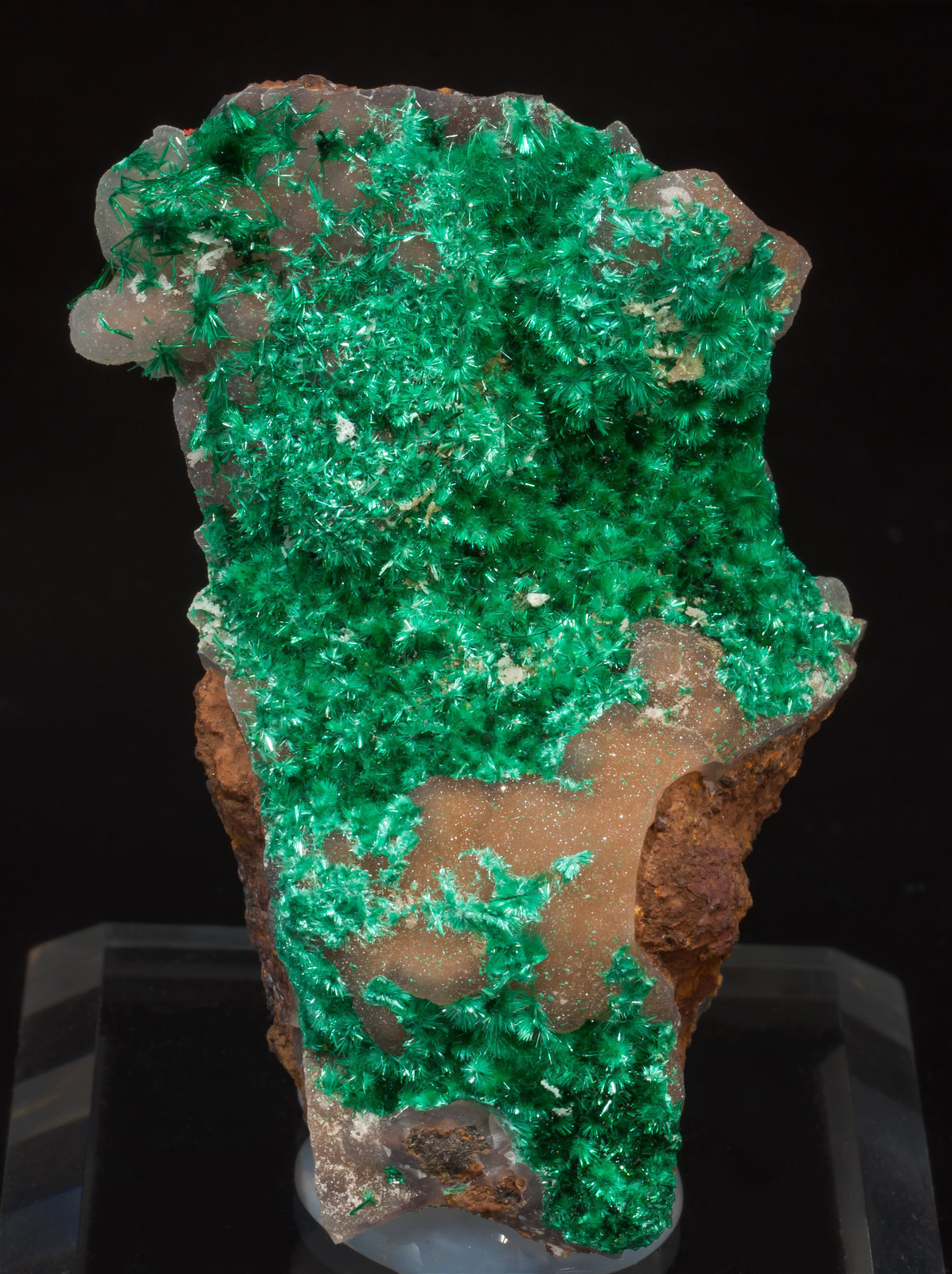 specimens/s_imagesAF0/Brochantite-MV56AF0f.jpg