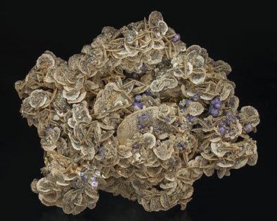 Chalcopyrite with Arsenopyrite, Fluorapatite, Siderite and Muscovite. Rear