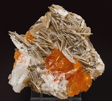 Scheelite with Beryl (variety goshenite) and Muscovite.