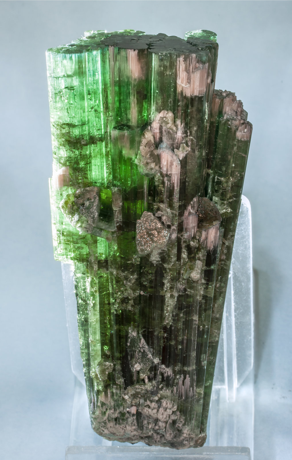 specimens/s_imagesAF5/Elbaite-TV37AF5f2.jpg