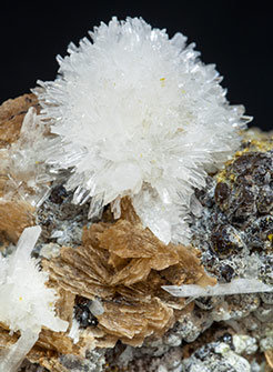 Roweite with Olshanskyite and Andradite.