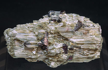 Lepidolite after Elbaite with Tantalite-(Mn). Rear
