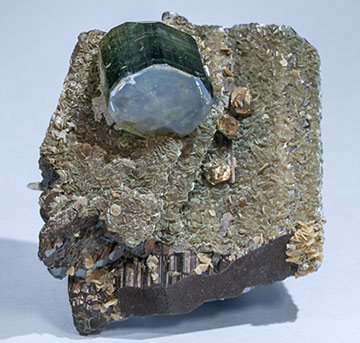 Fluorapatite with Ferberite, Siderite, Muscovite and Pyrite.