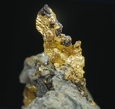 Gold with Sphalerite.