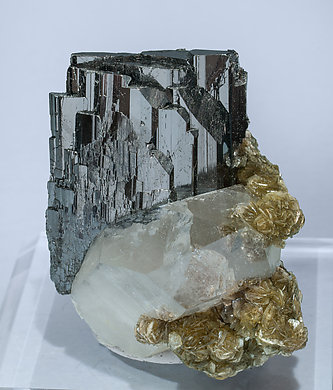 Ferberite with Quartz and Muscovite.