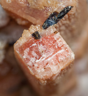 Rhodochrosite after Serandite with Analcime and Aegirine. Top