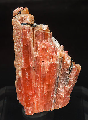 Rhodochrosite after Serandite with Analcime and Aegirine. Rear