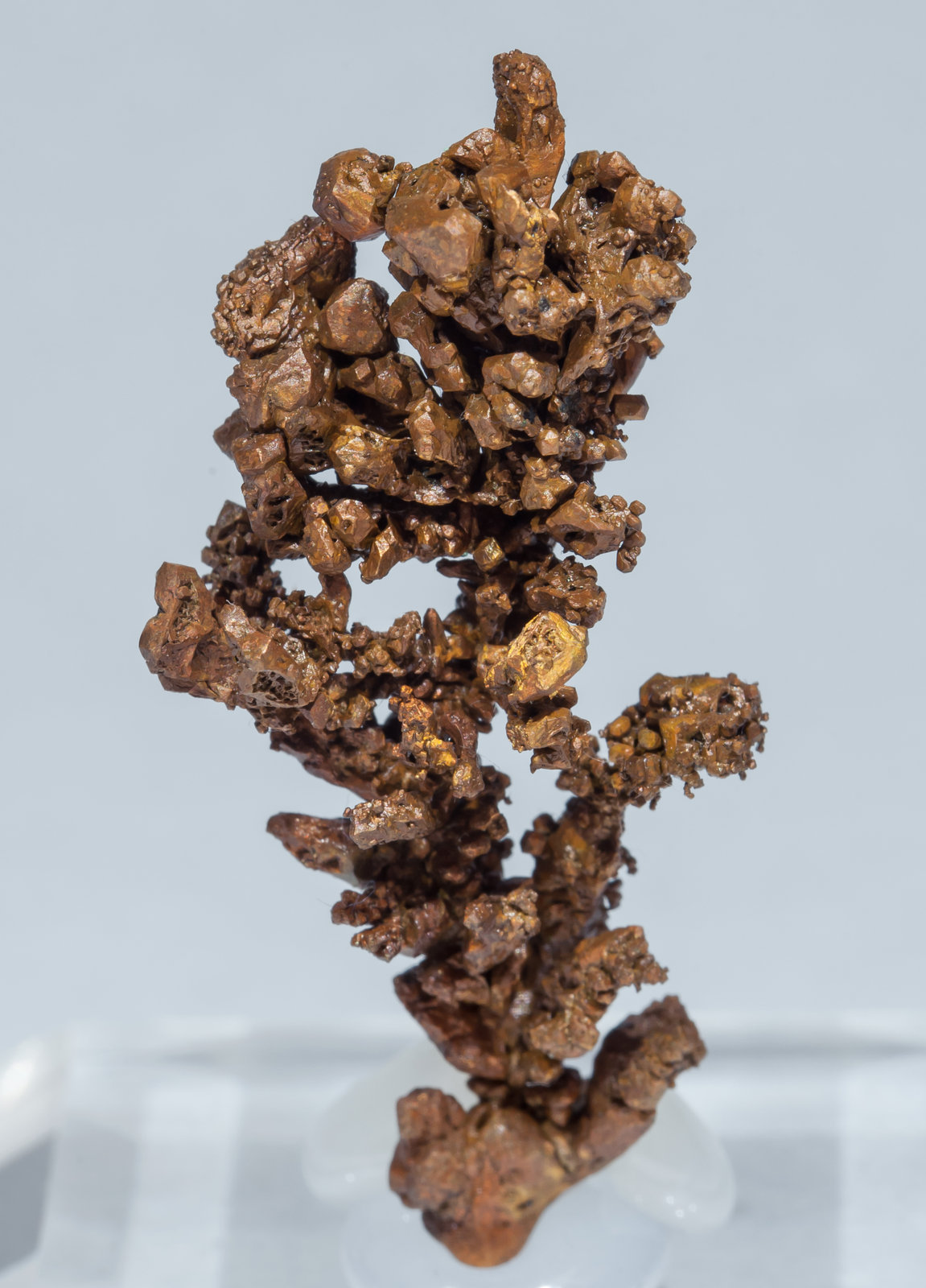 specimens/s_imagesAH7/Copper-TJ13AH7f.jpg