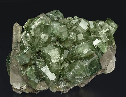 Fluorapatite with Quartz, Arsenopyrite, Muscovite and Chlorite.
