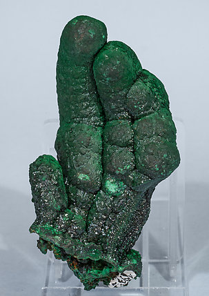 Malachite with Heterogenite. Rear