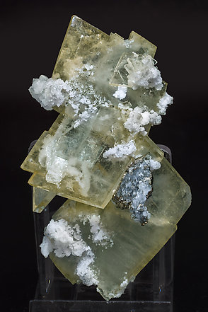 Baryte with Quartz and Pyrite. Rear