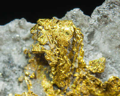 Gold with Quartz.