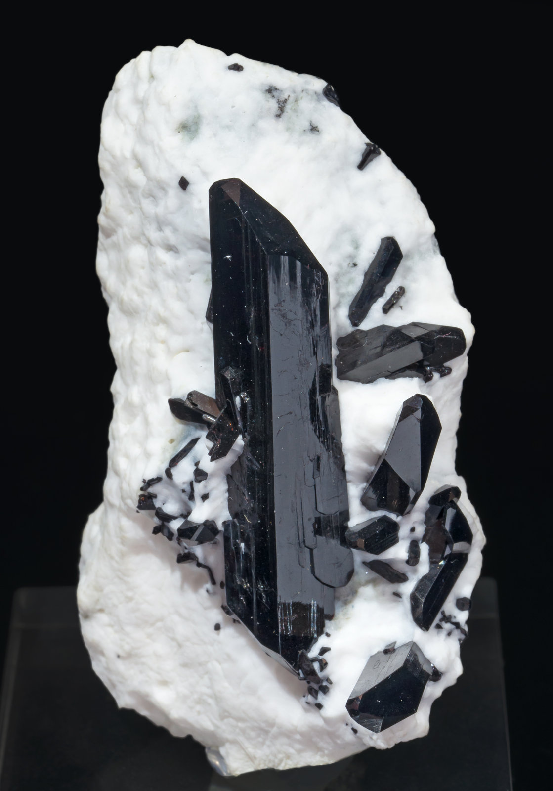 specimens/s_imagesAI3/Neptunite-NB26AI3f.jpg